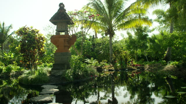 naples landscape - botanical garden stock videos & royalty-free footage