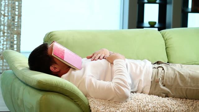 vídeos de stock e filmes b-roll de dormitar - napping