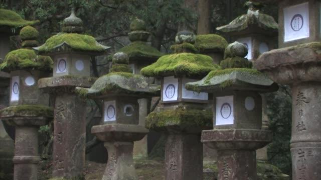 nara prefecture Park, nara prefecture, Honshu, Japan