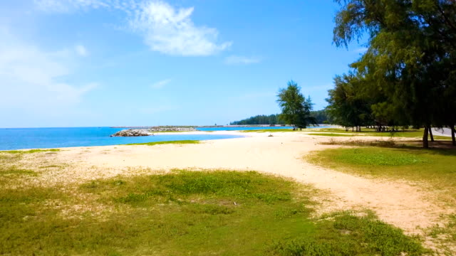 narathieat beach - grass family stock videos & royalty-free footage