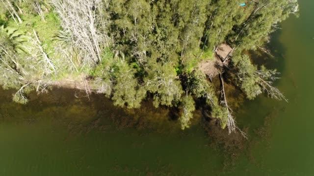 narrabeen see am wasser schwenken oben - geschützte naturlandschaft stock-videos und b-roll-filmmaterial