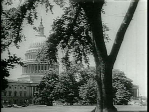 stockvideo's en b-roll-footage met narrated / a large crowd / exterior of us capitol building / - narrating