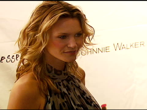 natasha henstridge at the 'dressed to kilt' arrivals presented by johnnie walker at smashbox studios in los angeles california on october 14 2006 - dressed to kilt stock videos & royalty-free footage