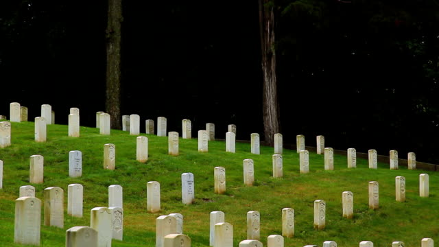 national cemetery hillside with dark background - us memorial day stock videos & royalty-free footage