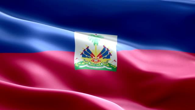 national flag haiti wave pattern loopable elements - flag haiti stock videos & royalty-free footage