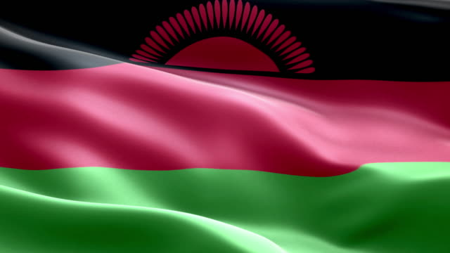 National flag malawi wave Pattern loopable Elements