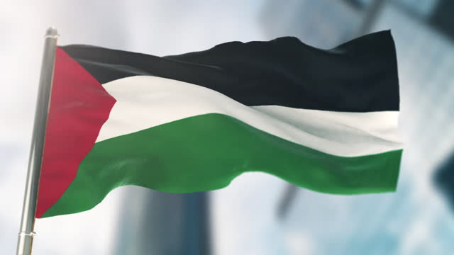 national flag of palestine. slow motion - freedom stock videos & royalty-free footage