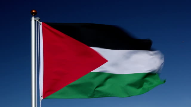 national flag of palestine - palestinian territories stock videos and b-roll footage