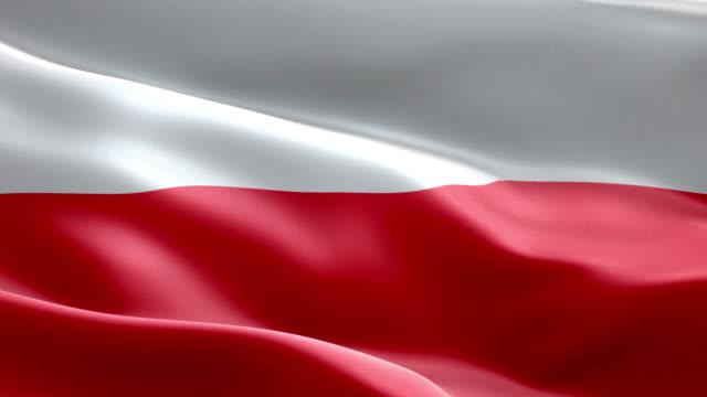 Flagga Polen våg mönster loopable element