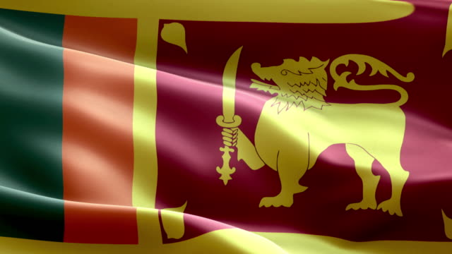 national flag sri lanka wave pattern loopable elements - sri lankan flag stock videos & royalty-free footage
