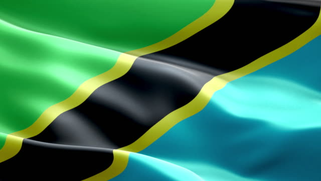 national flag tanzania wave pattern loopable elements - flag stock videos & royalty-free footage