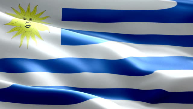 national flag uruguay wave pattern loopable elements - uruguaian flag stock videos & royalty-free footage