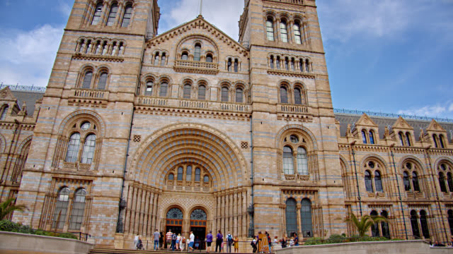 national history museum in london - marble stock videos & royalty-free footage