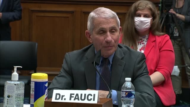 national institute of allergy and infectious diseases director anthony fauci response to a question about reopening schools by kentucky congressman... - wyoming stock videos & royalty-free footage