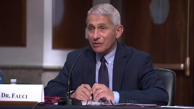 national institute of allergy and infectious diseases director anthony fauci tells the senate help committee at a coronavirus oversight hearing that... - epidemiology stock videos & royalty-free footage