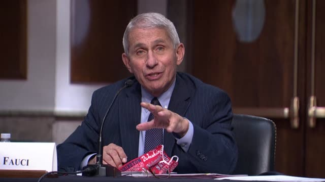 national institute of allergy and infectious diseases director anthony fauci continues his answer to a senator at a senate help committee hearing... - curve stock videos & royalty-free footage