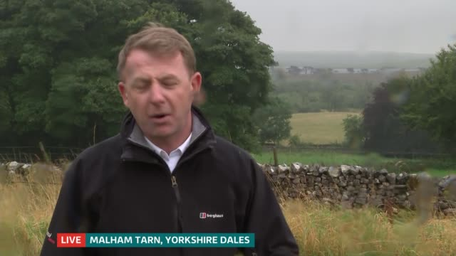 national trust release water voles into yorkshire dales tarn; england: north yorkshire: malham tarn: ext / rain reporter to camera/ variuos close... - national trust video stock e b–roll