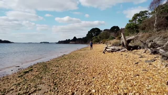 national trust warns of threat to its sites due to climate change; england: dorset: brownsea island: ext air views / aerials / drone shots brownsea... - walking in water stock videos & royalty-free footage