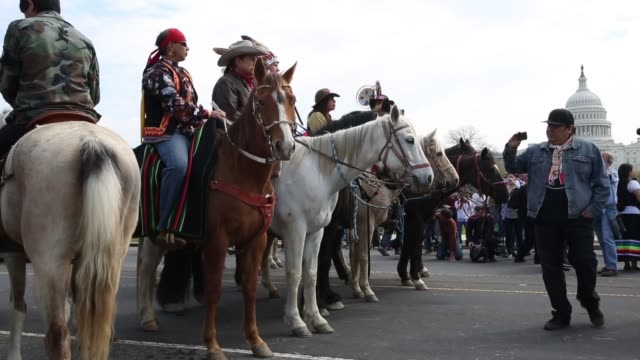 stockvideo's en b-roll-footage met ws native american demonstrators prepare to ride horses through washington as part of the protest members of the cowboy and indian alliance including... - recreatief paardrijden