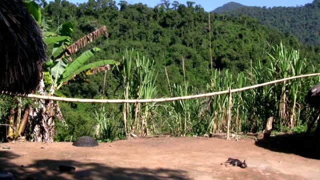 vídeos de stock e filmes b-roll de hd: índio americano de - telhado de palha