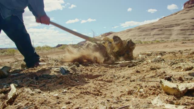 vidéos et rushes de un adolescent amérindien utilise une hache pour hacher le bois de chauffage dans monument valley en arizona/utah sur une journée claire et ensoleillée avec une grande formation rocheuse derrière lui - bois