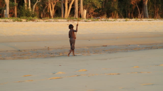 ms ts native boy walking on beach with stick on tiwi islands / northern territory, australia - island stock videos & royalty-free footage