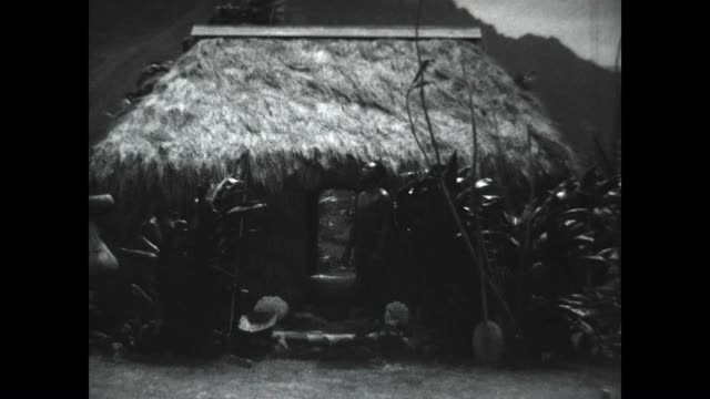 vídeos de stock e filmes b-roll de native hawaiian man sings in front of his thatched hawaiian hut known as the hale . - cultura polinésia