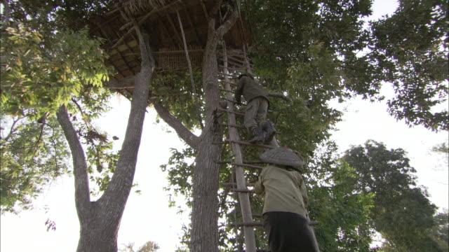 vídeos de stock, filmes e b-roll de native laotians climb a ladder to a tree house. - treehouse