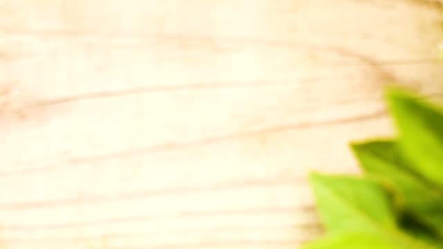 緑の植物と natual ウッド フェンス ボード - 茶色背景点の映像素材/bロール