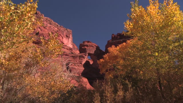 ws zi natural arch and trees with autumn leaves/ canyon de chelly national monument, arizona - canyon de chelly stock videos & royalty-free footage