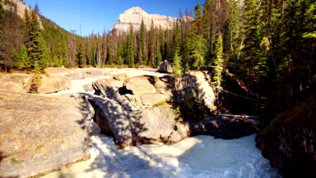 ponte naturale in fiume equino che calcia, parco nazionale yoho, canada. - area selvatica video stock e b–roll