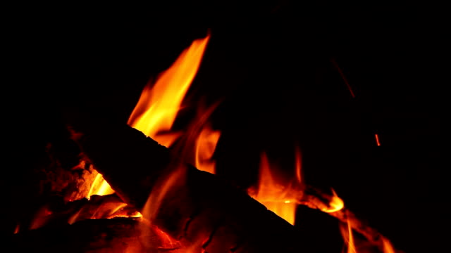 Natural Campfire With Fire Tips