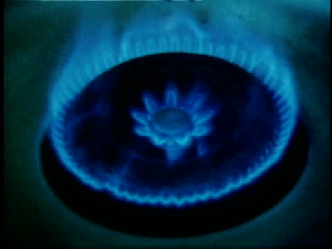 1973 cu zi natural gas stovetop flame, usa, audio - cooker stock videos and b-roll footage