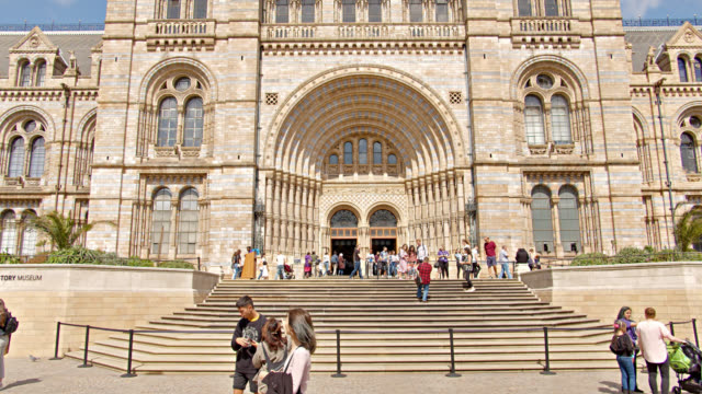 natural history museum building - monument stock videos & royalty-free footage