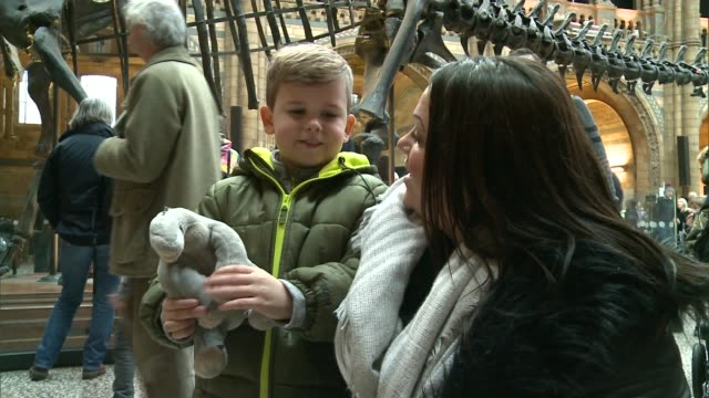 Natural History Museum dinosaur 'Dippy' to tour country Vox pops/ Visitors photographing 'Dippy' the Diplodocus dinosaur/ Reporter to camera/ Various...
