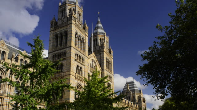 natural history museum, london. - kensington und chelsea stock-videos und b-roll-filmmaterial