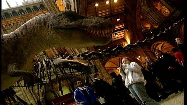 Robot dinosaur assembly ***BEWARE ENGLAND London Natural History Museum INT GV young girl beneath Tyrannosaurus Rex / CS dinosaur head