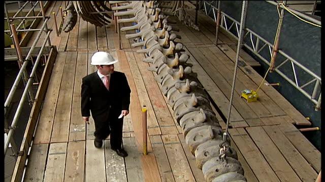 vidéos et rushes de natural history museum whale skeleton cleaned reporter to camera - cétacé
