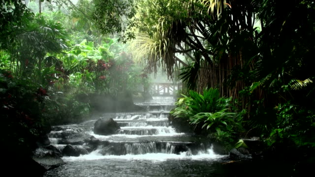 natural hot spring - costa rica stock videos & royalty-free footage