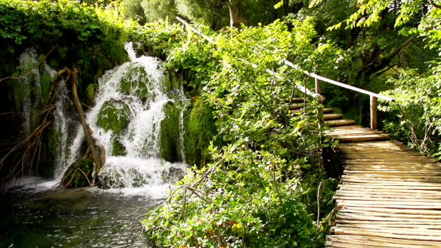 vidéos et rushes de slo missouri site naturel parc national des lacs plitvice - natural landmark