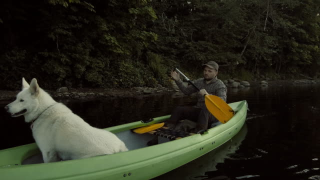 nature adventure in a canoe with a dog - andare in canoa video stock e b–roll