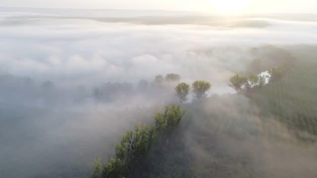 Natur und Wolkenknschaft. Drohne: Luftblick über das Meer der Wolken, Sonnenstrahlheit, Nebel und Nebel über den Hügeln und den Fluss, Himmelsblick, strahlend sonniger Tag, Sonnenlicht, Bright Clear Blue Sky, Beauty in Nature