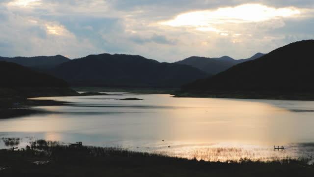 nature at mae-kuang-udom-thara-dam, chiang mai, thailand - invertebrate stock videos & royalty-free footage