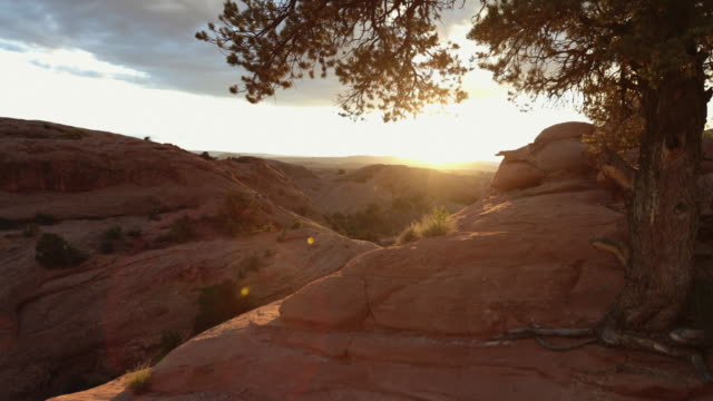 nature at sunset in the southwest usa, moab - moab utah stock videos & royalty-free footage