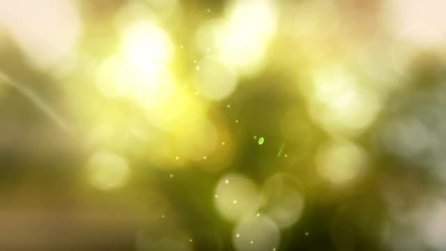 stockvideo's en b-roll-footage met nature defocused - lente