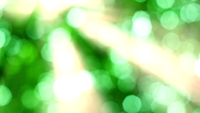 Natürlichen grünen Hintergrund und Sonnenaufgang