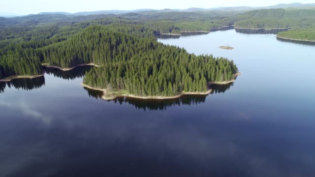 Nature in its glory. Aerial view over beautiful mountain lake surrounded by green pine forest.