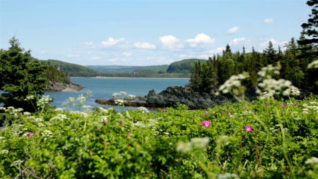 nature landscapes of bic national park, quebec, canada - quebec stock videos and b-roll footage
