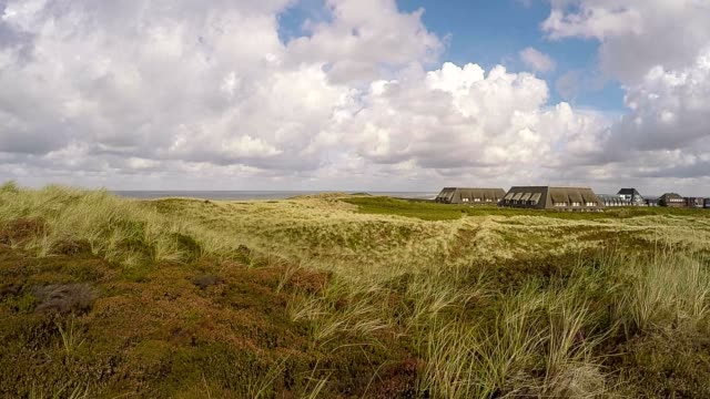nature reserve braderup heath - sylt / germany - thatched roof stock videos and b-roll footage