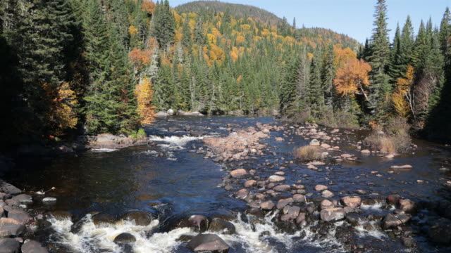 4K Natur River Herbst Landschaft, Quebec, Kanada